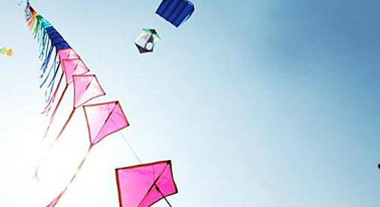 Kite Gujarat