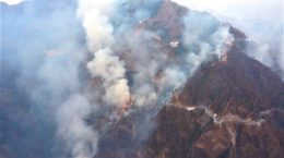 Fire in Forest near Katra